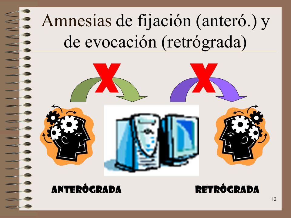 12 Amnesias de fijación (anteró.) y de evocación (retrógrada) XX Anterógrada retrógrada