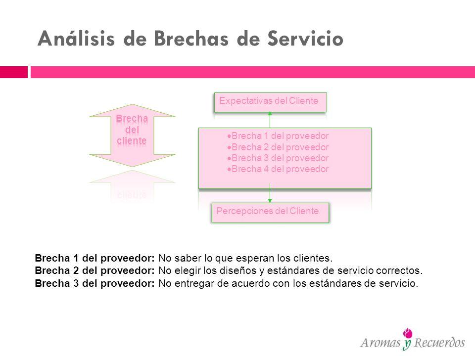 Análisis de Brechas de Servicio Percepciones del Cliente Brecha 1 del proveedor: No saber lo que esperan los clientes. Brecha 2 del proveedor: No eleg