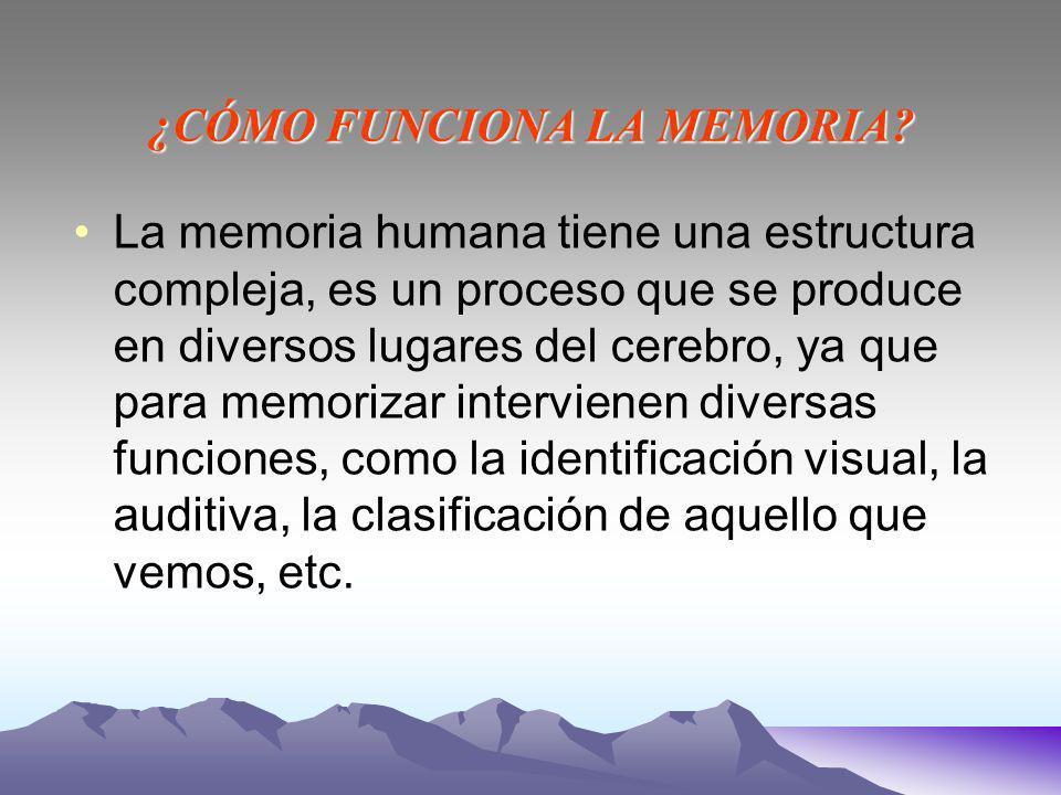 ¿CÓMO FUNCIONA LA MEMORIA.