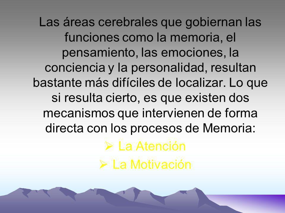 Las áreas cerebrales que gobiernan las funciones como la memoria, el pensamiento, las emociones, la conciencia y la personalidad, resultan bastante más difíciles de localizar.