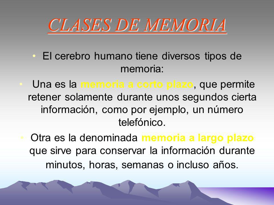 CLASES DE MEMORIA El cerebro humano tiene diversos tipos de memoria: Una es la memoria a corto plazo, que permite retener solamente durante unos segundos cierta información, como por ejemplo, un número telefónico.