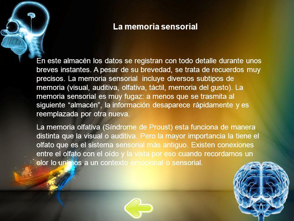 La memoria sensorial En este almacén los datos se registran con todo detalle durante unos breves instantes. A pesar de su brevedad, se trata de recuer