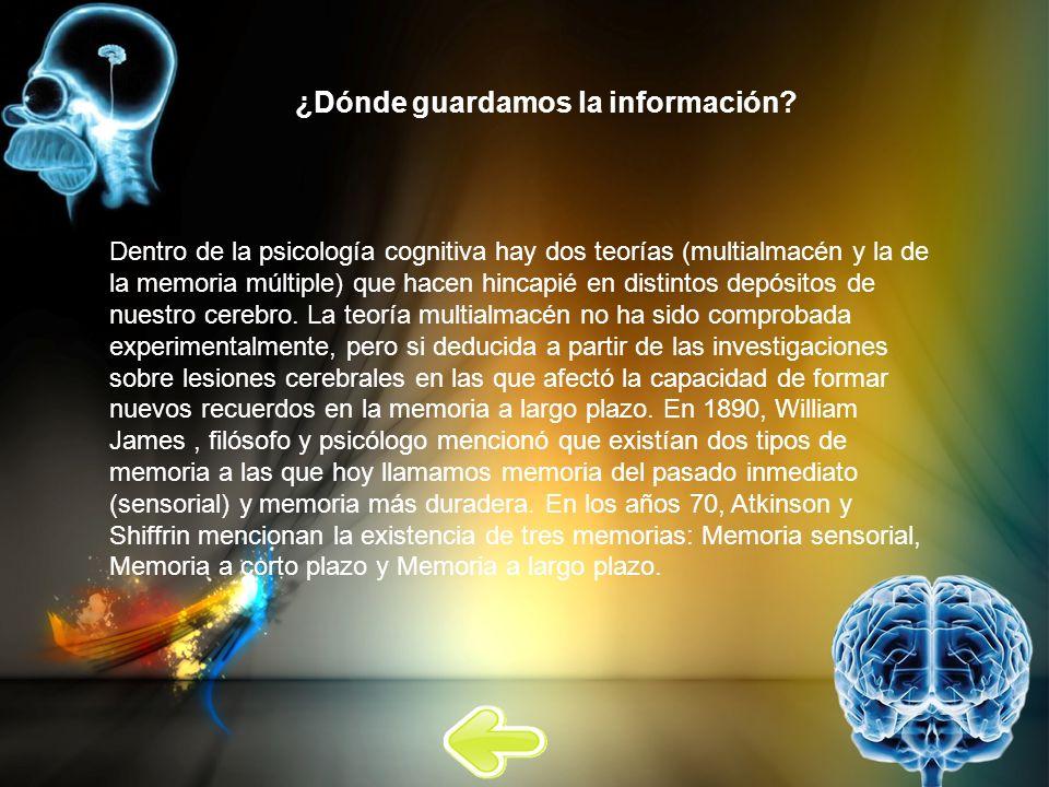 ¿Dónde guardamos la información? Dentro de la psicología cognitiva hay dos teorías (multialmacén y la de la memoria múltiple) que hacen hincapié en di