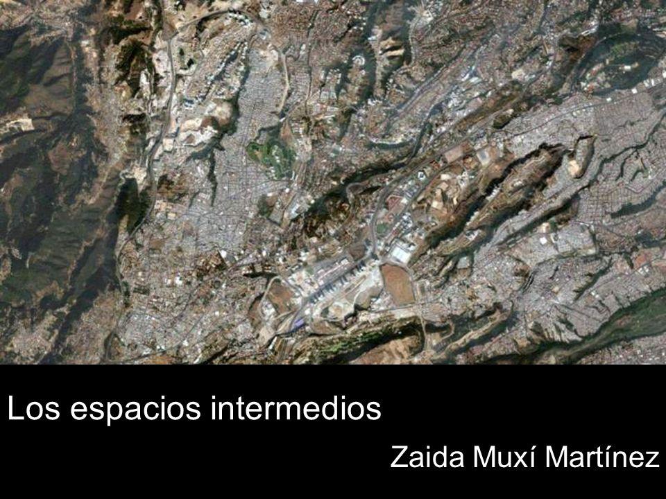 Los espacios intermedios Zaida Muxí Martínez
