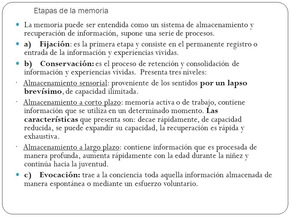 Etapas de la memoria La memoria puede ser entendida como un sistema de almacenamiento y recuperación de información, supone una serie de procesos. a)
