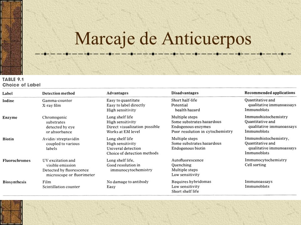 Marcaje de Anticuerpos