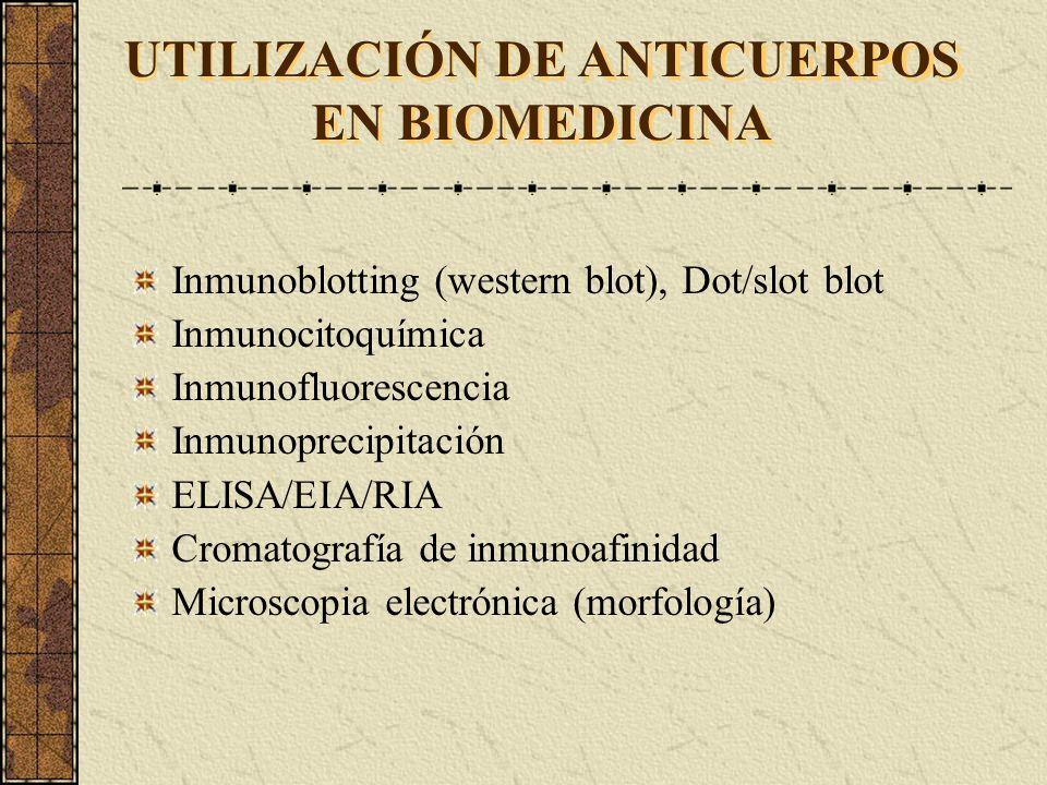 Inmunoblotting (western blot), Dot/slot blot Inmunocitoquímica Inmunofluorescencia Inmunoprecipitación ELISA/EIA/RIA Cromatografía de inmunoafinidad M