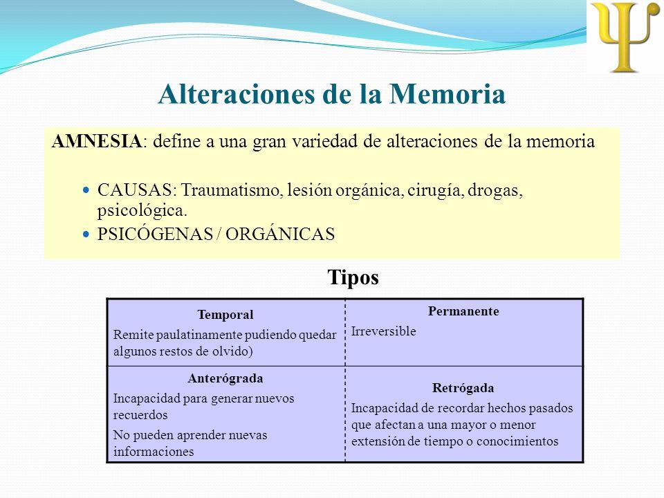 Alteraciones de la Memoria AMNESIA: define a una gran variedad de alteraciones de la memoria CAUSAS: Traumatismo, lesión orgánica, cirugía, drogas, ps