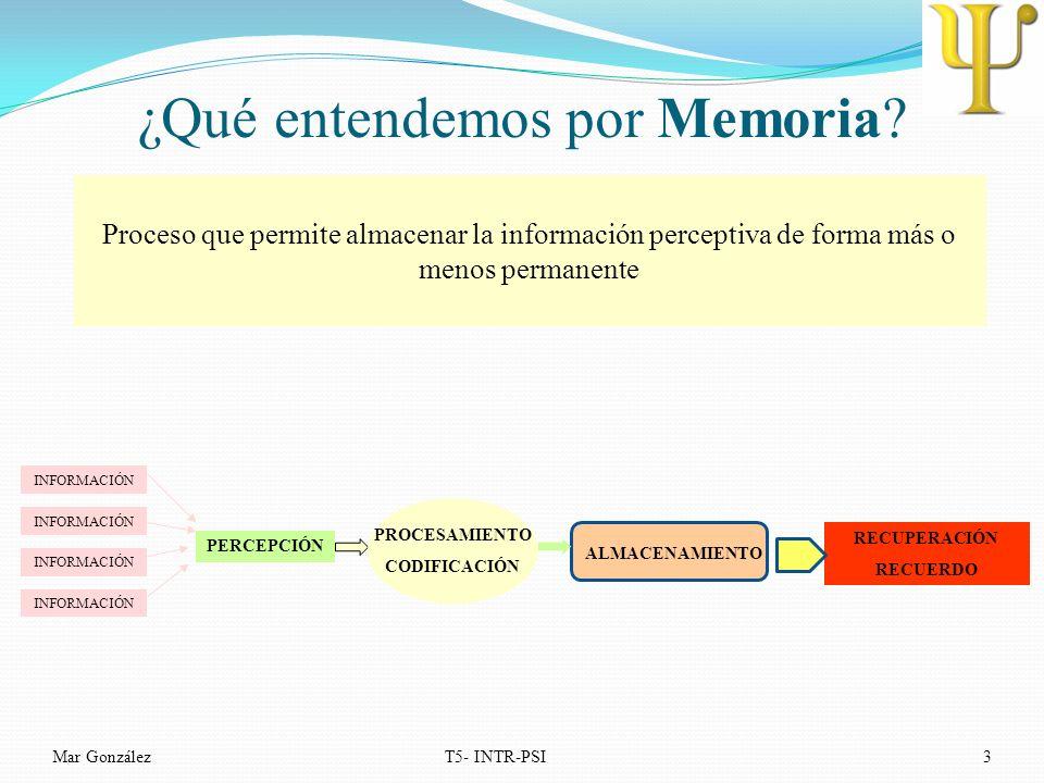 ¿Qué entendemos por Memoria? Mar GonzálezT5- INTR-PSI3 Proceso que permite almacenar la información perceptiva de forma más o menos permanente INFORMA
