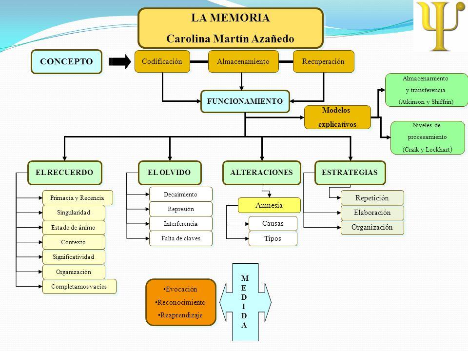 LA MEMORIA Carolina Martín Azañedo LA MEMORIA Carolina Martín Azañedo CONCEPTO FUNCIONAMIENTO EL RECUERDO EL OLVIDO ALTERACIONES ESTRATEGIAS Codificac