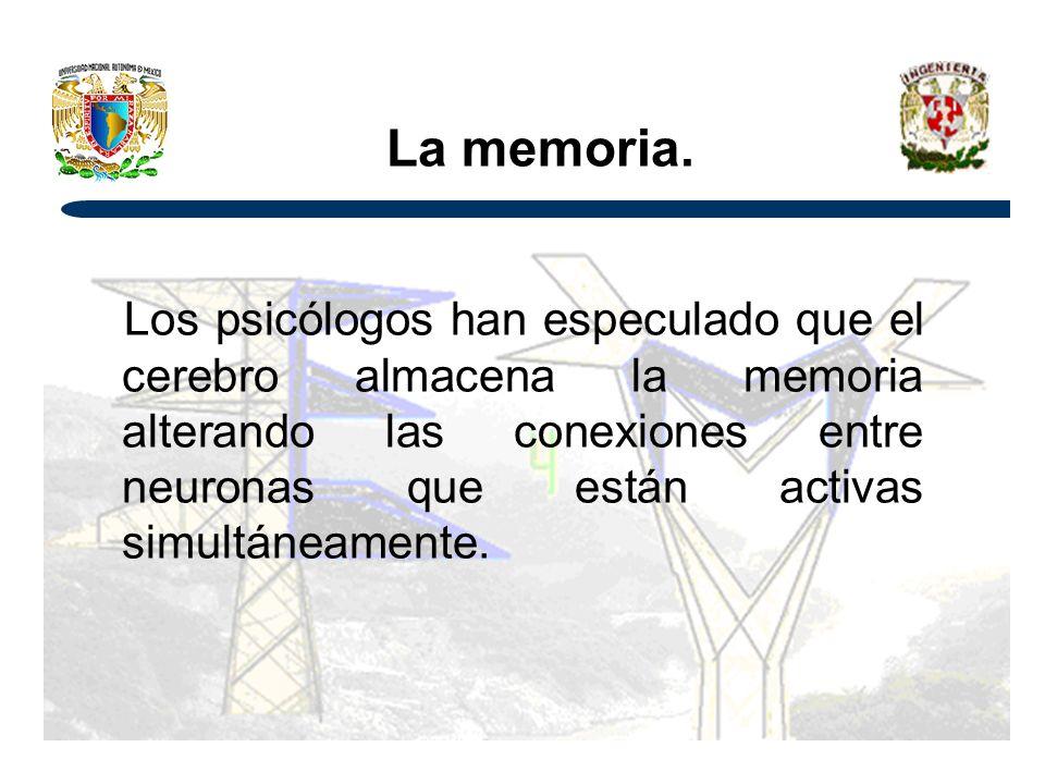 La memoria.