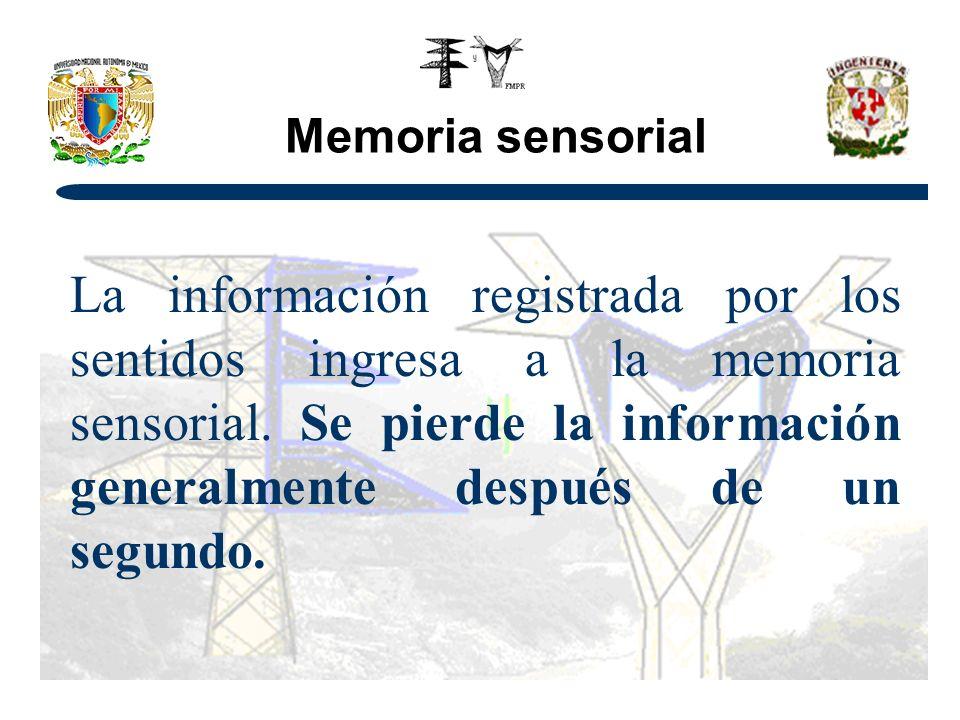 Memoria sensorial La información registrada por los sentidos ingresa a la memoria sensorial.