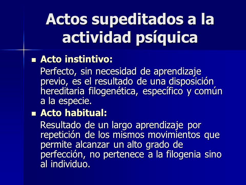 Actos supeditados a la actividad psíquica Acto instintivo: Acto instintivo: Perfecto, sin necesidad de aprendizaje previo, es el resultado de una disp