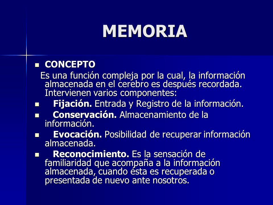 MEMORIA CONCEPTO CONCEPTO Es una función compleja por la cual, la información almacenada en el cerebro es después recordada. Intervienen varios compon