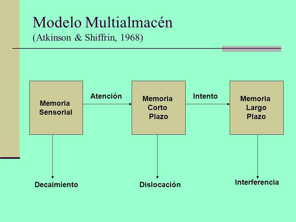 Modelo Multialmacén (Atkinson & Shiffrin, 1968) Memoria Sensorial Memoria Corto Plazo Memoria Largo Plazo AtenciónIntento DecaimientoDislocación Inter