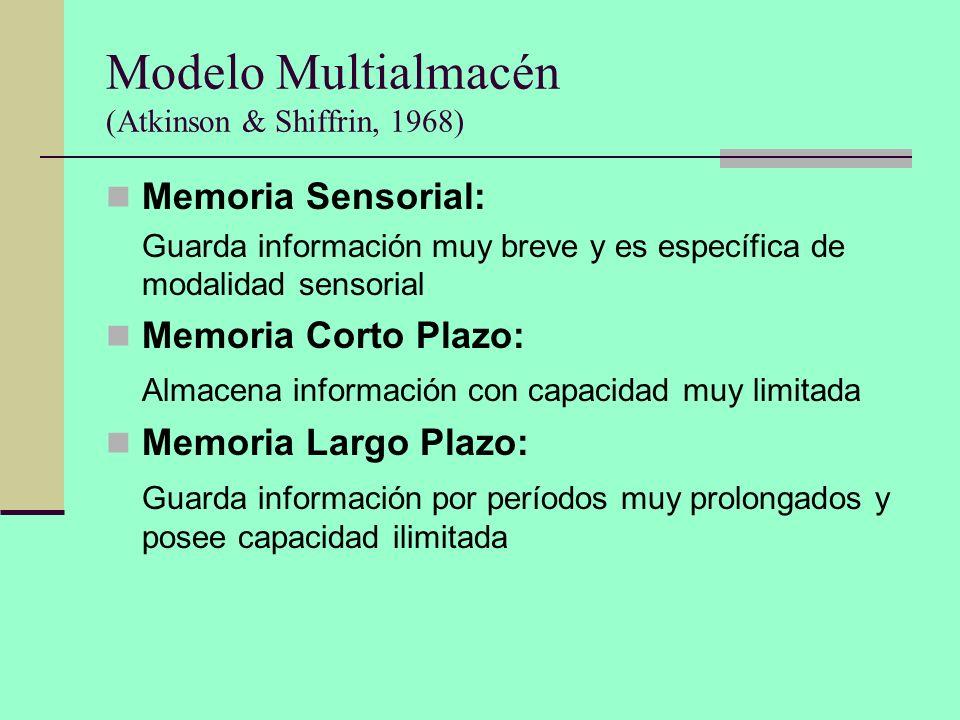 Modelo Multialmacén (Atkinson & Shiffrin, 1968) Memoria Sensorial: Guarda información muy breve y es específica de modalidad sensorial Memoria Corto P