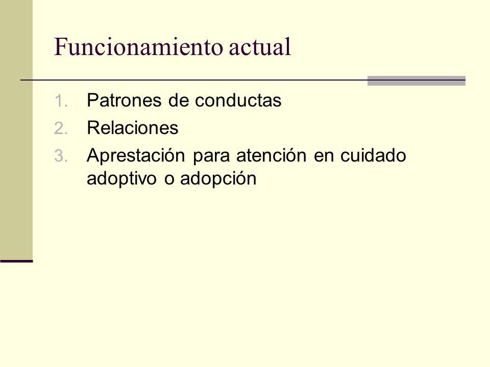 Funcionamiento actual 1. Patrones de conductas 2. Relaciones 3. Aprestación para atención en cuidado adoptivo o adopción