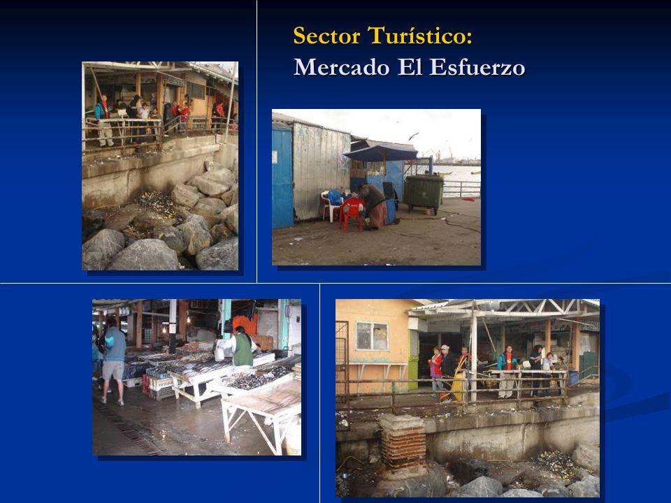 Sector Turístico: Mercado El Esfuerzo