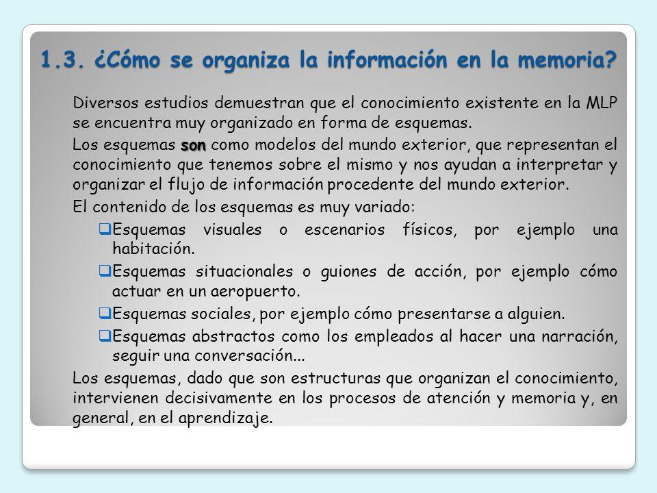 1.3. ¿Cómo se organiza la información en la memoria? Diversos estudios demuestran que el conocimiento existente en la MLP se encuentra muy organizado