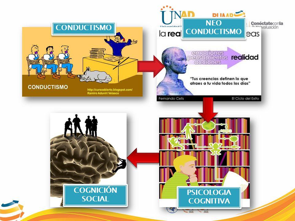NEUROCIENCIA SOCIAL PSICOLOGIA SOCIAL EVOLUCIONISTA PERSONALIDAD