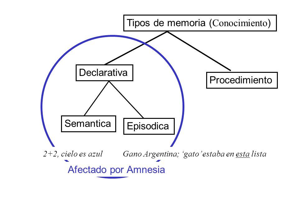Declarativa Semantica Episodica Tipos de memoria ( Conocimiento ) Procedimiento Afectado por Amnesia 2+2, cielo es azulGano Argentina; gato estaba en