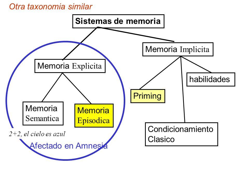 Sistemas de memoria Memoria Explicita Memoria Implicita Memoria Semantica Memoria Episodica Priming Condicionamiento Clasico habilidades Otra taxonomi