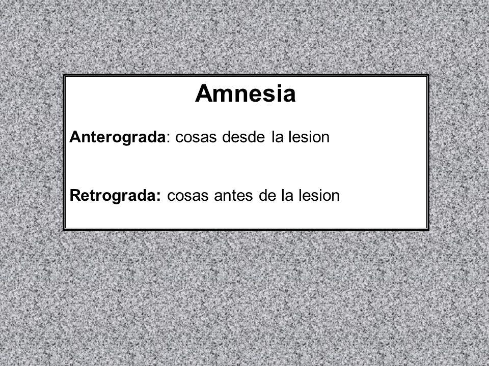 Amnesia Anterograda: cosas desde la lesion Retrograda:cosas antes de la lesion