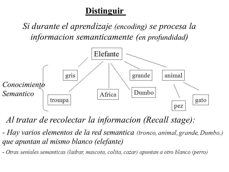 Memoria Implicita Priming Perceptual (modality specific)Var Dep –Presentacion Taquitoscopica (lee la palabra): xxxx --> Silueta % identificado Silueta --> Silueta Priming Conceptual (amodal ) –Completar la raiz (word stem completion) xxxx--> Sil__Eleccion Silueta--> Sil__