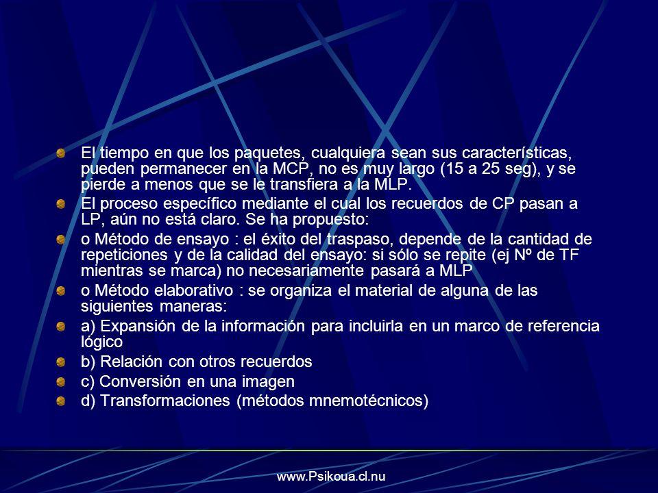 www.Psikoua.cl.nu 4.2.3 La Memoria de Largo Plazo (MLP) Su capacidad es prácticamente ilimitada.