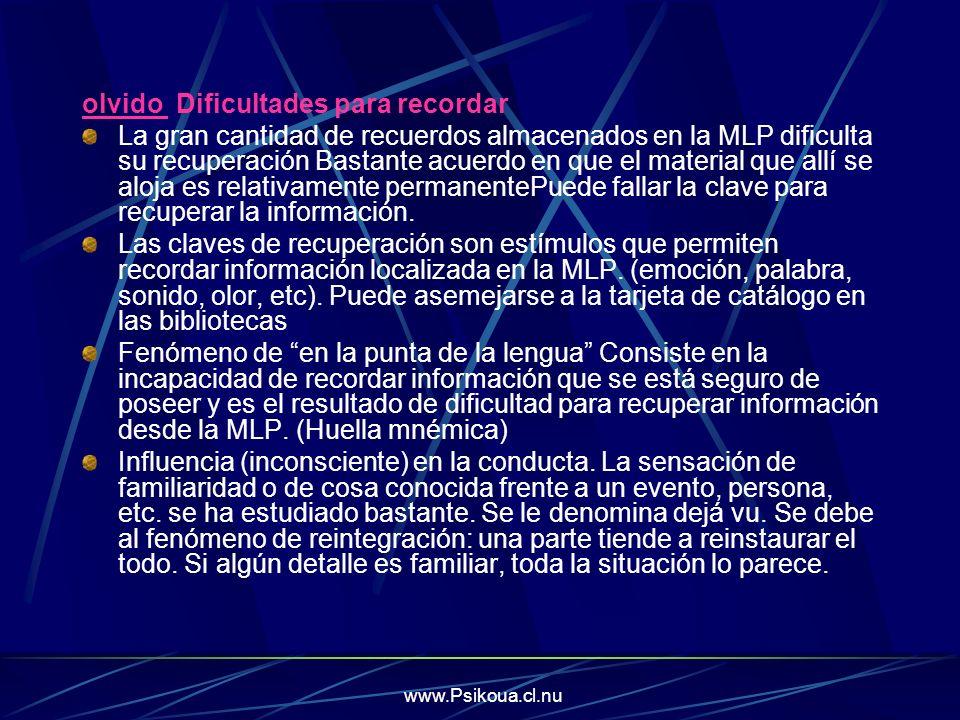 www.Psikoua.cl.nu olvido Dificultades para recordar La gran cantidad de recuerdos almacenados en la MLP dificulta su recuperación Bastante acuerdo en