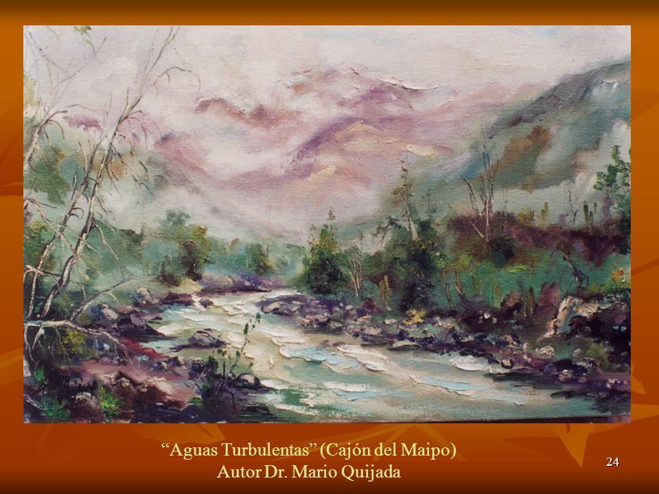 24 Aguas Turbulentas (Cajón del Maipo) Autor Dr. Mario Quijada