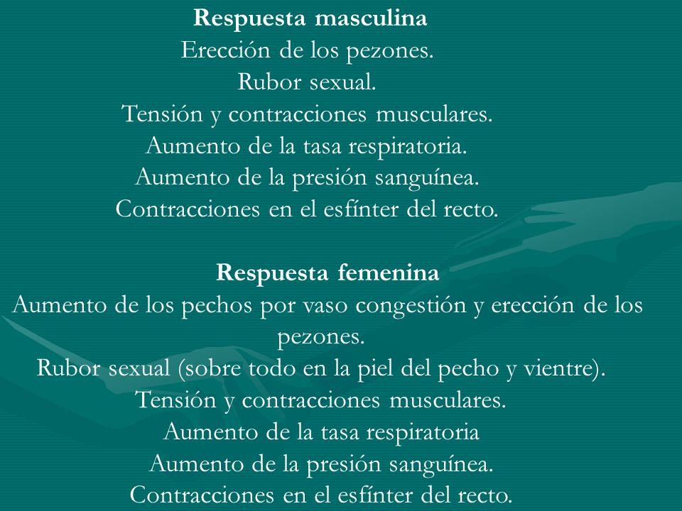 Respuesta masculina Erección de los pezones. Rubor sexual. Tensión y contracciones musculares. Aumento de la tasa respiratoria. Aumento de la presión