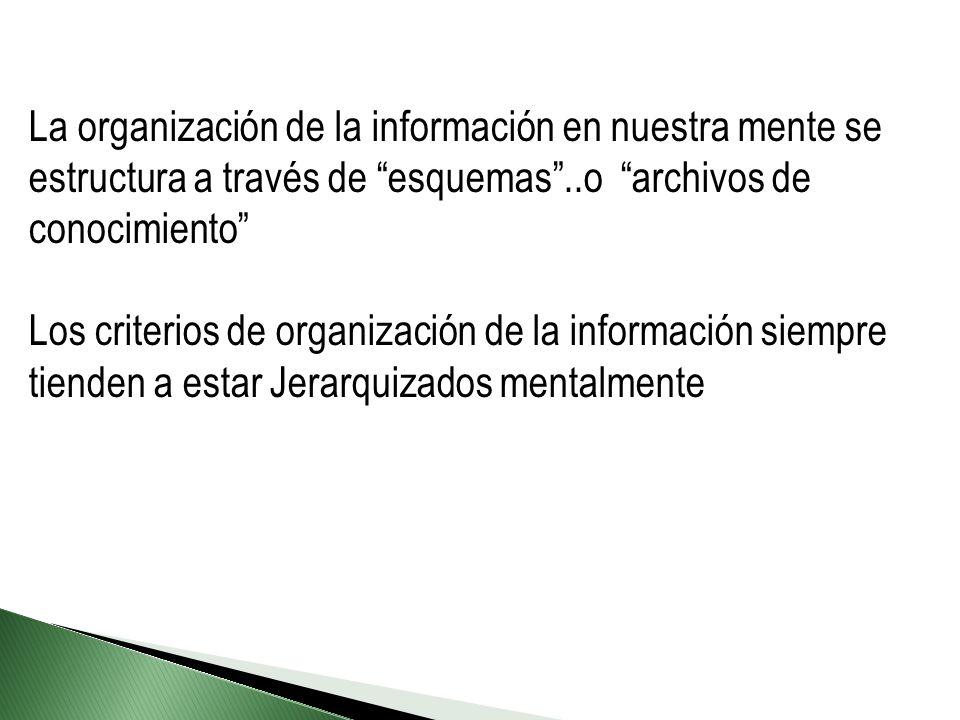 La organización de la información en nuestra mente se estructura a través de esquemas..o archivos de conocimiento Los criterios de organización de la