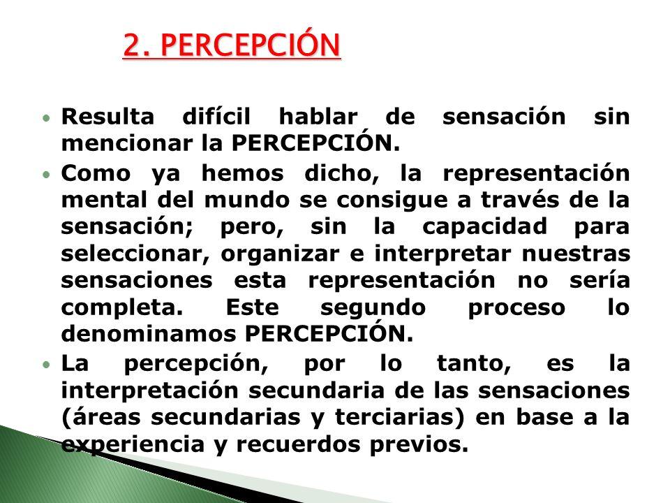 2. PERCEPCIÓN Resulta difícil hablar de sensación sin mencionar la PERCEPCIÓN. Como ya hemos dicho, la representación mental del mundo se consigue a t