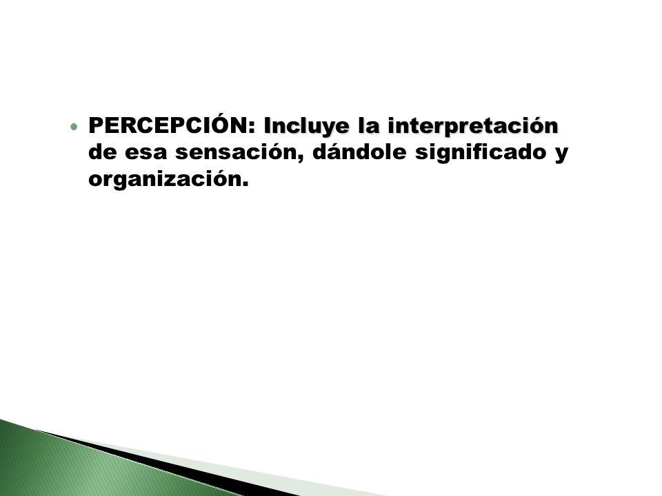 Incluye la interpretación PERCEPCIÓN: Incluye la interpretación de esa sensación, dándole significado y organización.