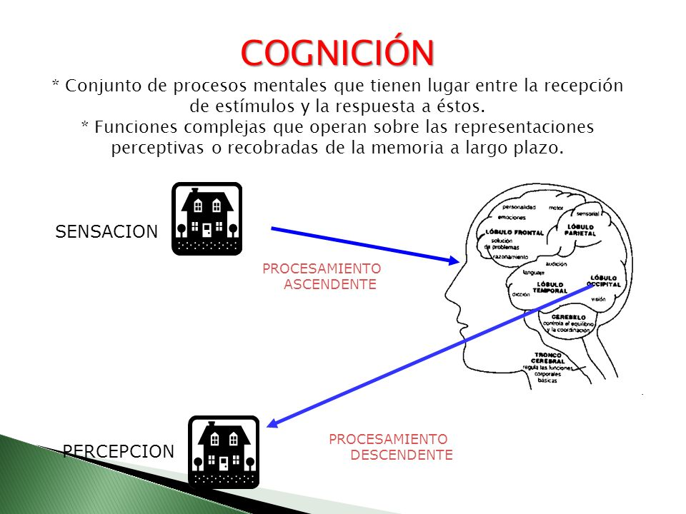 Recepción de estímulos Respuesta procesos mentales: COGNICIÓN COGNICIÓN Procesos mentales: Los datos aportados por los sentidos, o datos de entrada, pasan por etapas internas de re-traducción, elaboración y almacenamiento para su eventual utilización posterior.