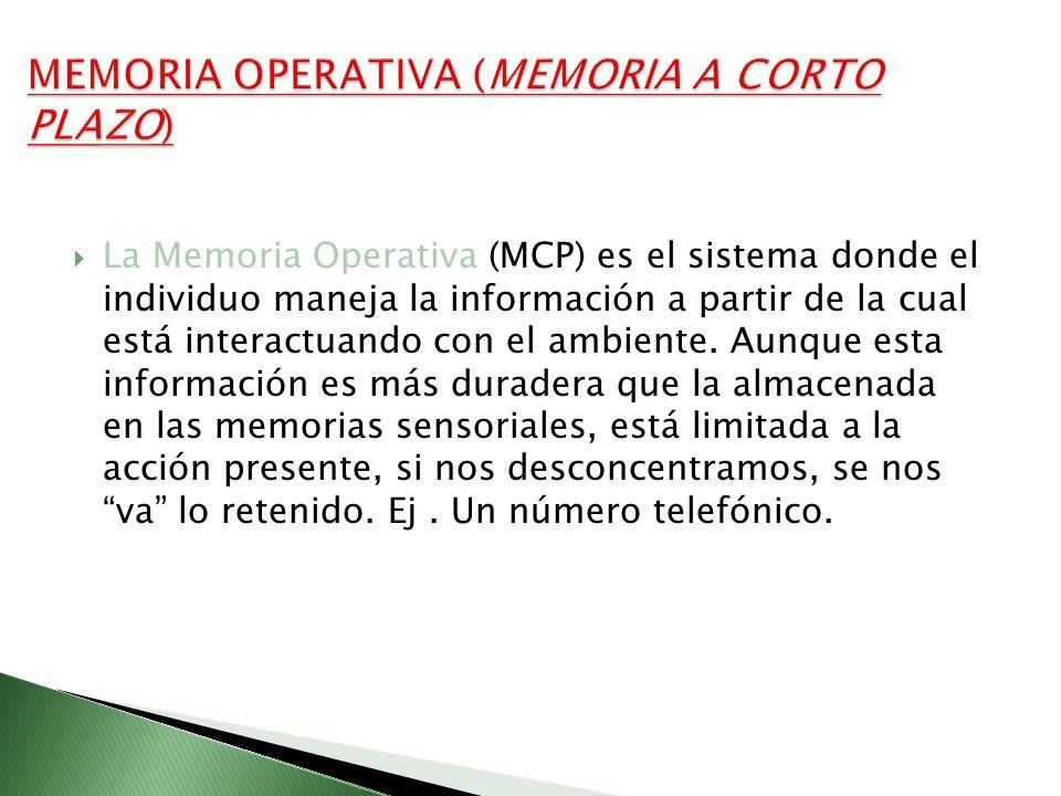 La Memoria Operativa (MCP) es el sistema donde el individuo maneja la información a partir de la cual está interactuando con el ambiente. Aunque esta