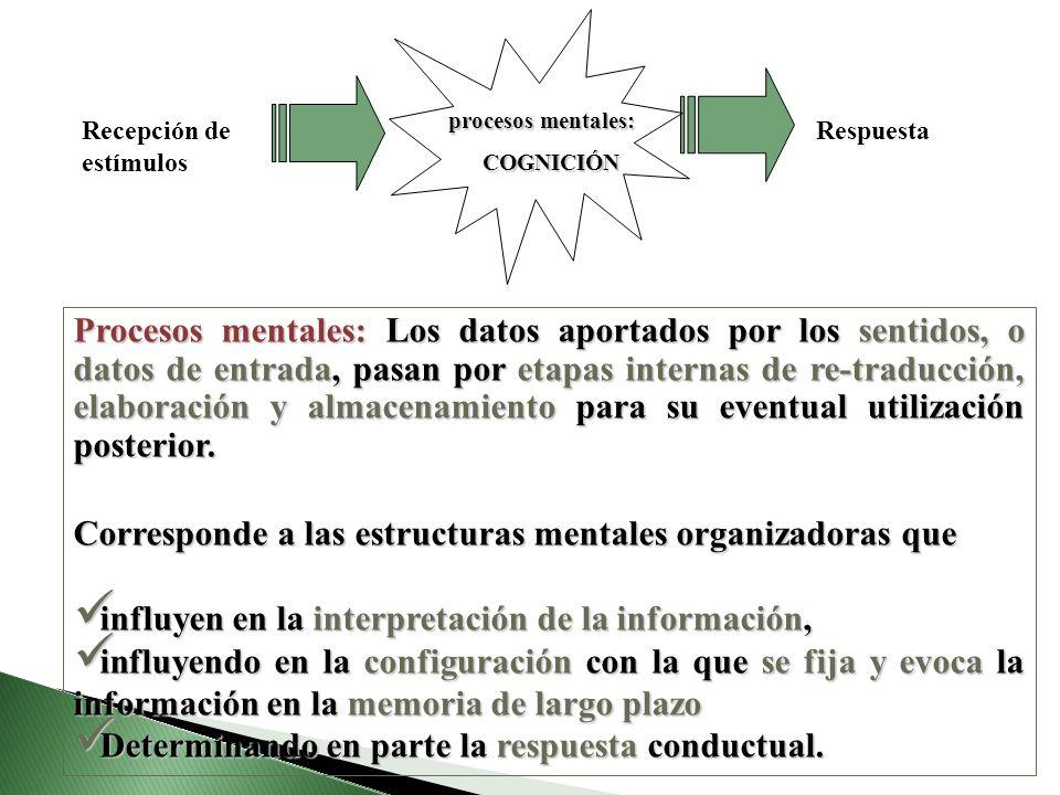 Recepción de estímulos Respuesta procesos mentales: COGNICIÓN COGNICIÓN Procesos mentales: Los datos aportados por los sentidos, o datos de entrada, p
