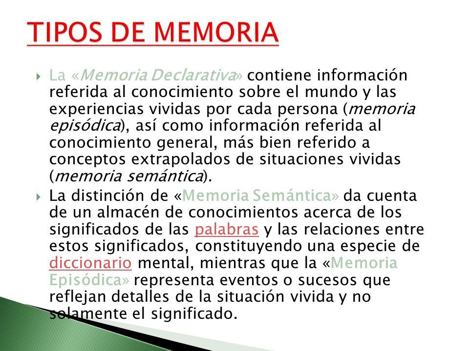 La «Memoria Declarativa» contiene información referida al conocimiento sobre el mundo y las experiencias vividas por cada persona (memoria episódica),
