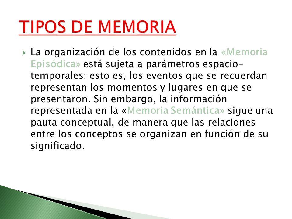 La organización de los contenidos en la «Memoria Episódica» está sujeta a parámetros espacio- temporales; esto es, los eventos que se recuerdan repres