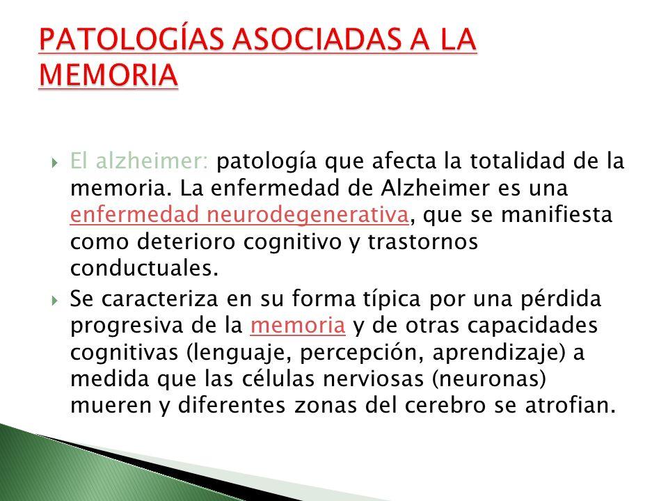 El alzheimer: patología que afecta la totalidad de la memoria. La enfermedad de Alzheimer es una enfermedad neurodegenerativa, que se manifiesta como