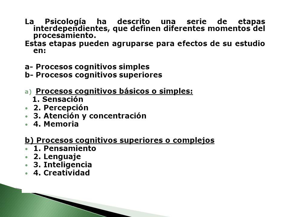 La Psicología ha descrito una serie de etapas interdependientes, que definen diferentes momentos del procesamiento. Estas etapas pueden agruparse para