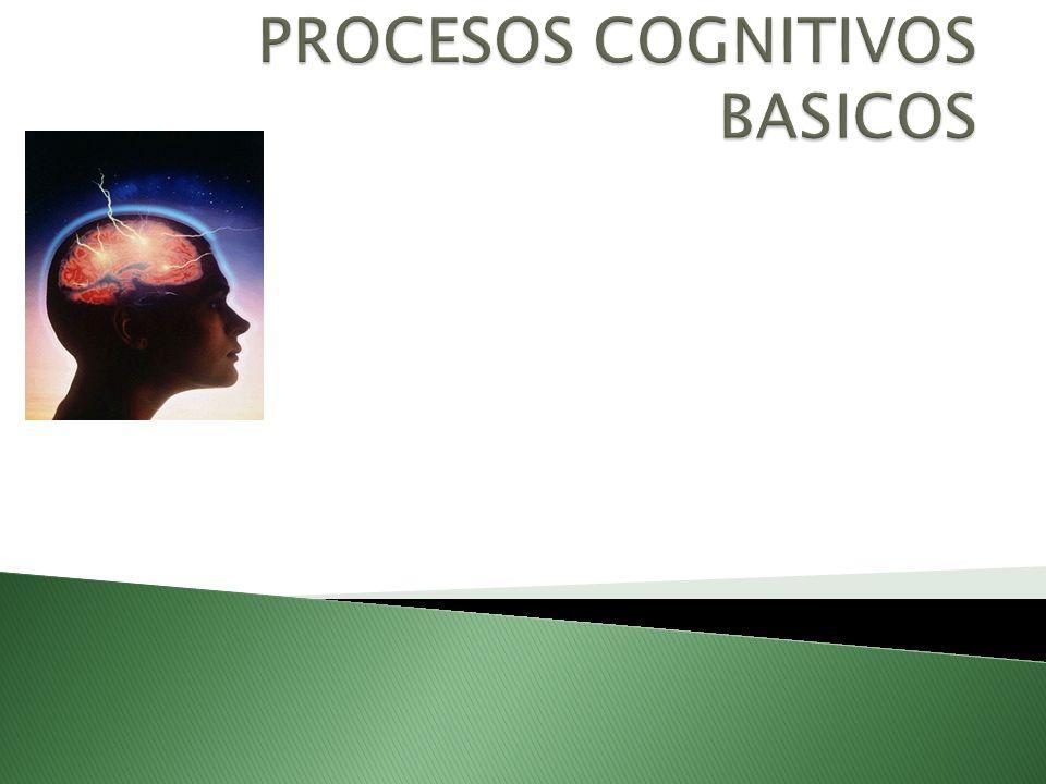 La memoria a largo plazo (MLP) es un almacén al que se hace referencia cuando comúnmente hablamos de memoria en general.