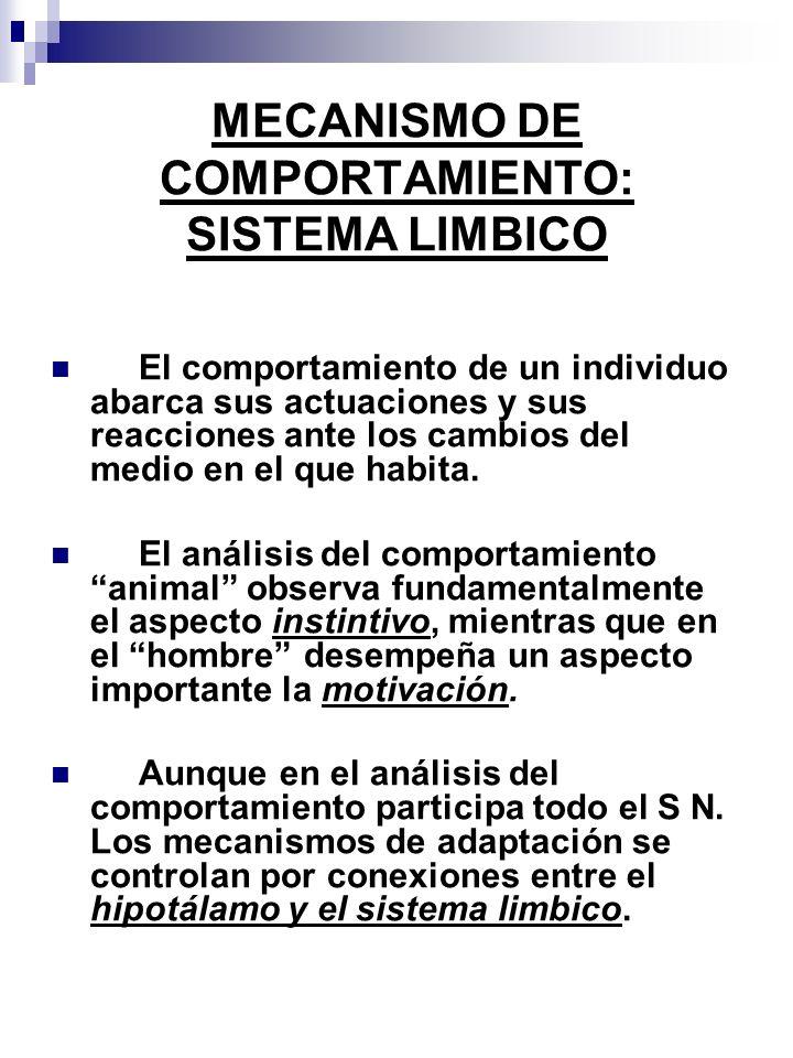 MECANISMO DE COMPORTAMIENTO: SISTEMA LIMBICO El comportamiento de un individuo abarca sus actuaciones y sus reacciones ante los cambios del medio en el que habita.