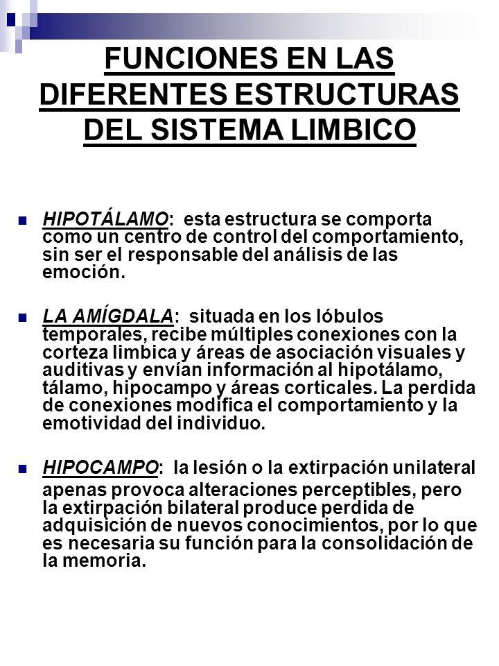FUNCIONES EN LAS DIFERENTES ESTRUCTURAS DEL SISTEMA LIMBICO HIPOTÁLAMO: esta estructura se comporta como un centro de control del comportamiento, sin