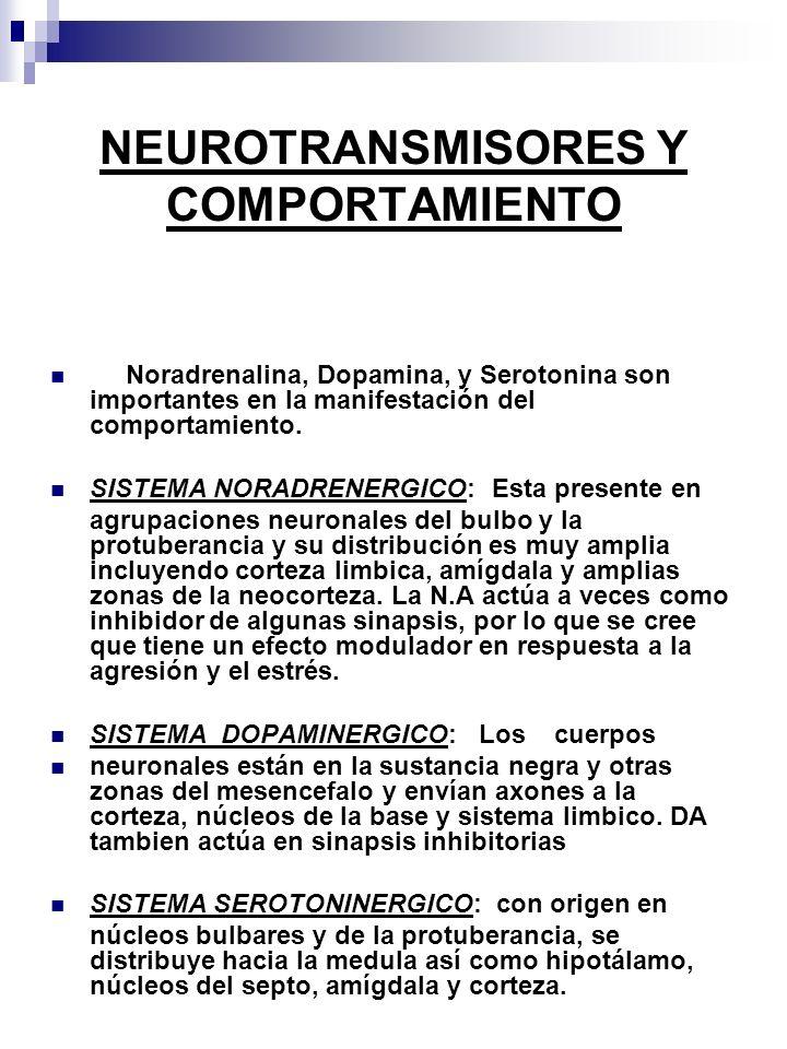NEUROTRANSMISORES Y COMPORTAMIENTO Noradrenalina, Dopamina, y Serotonina son importantes en la manifestación del comportamiento.