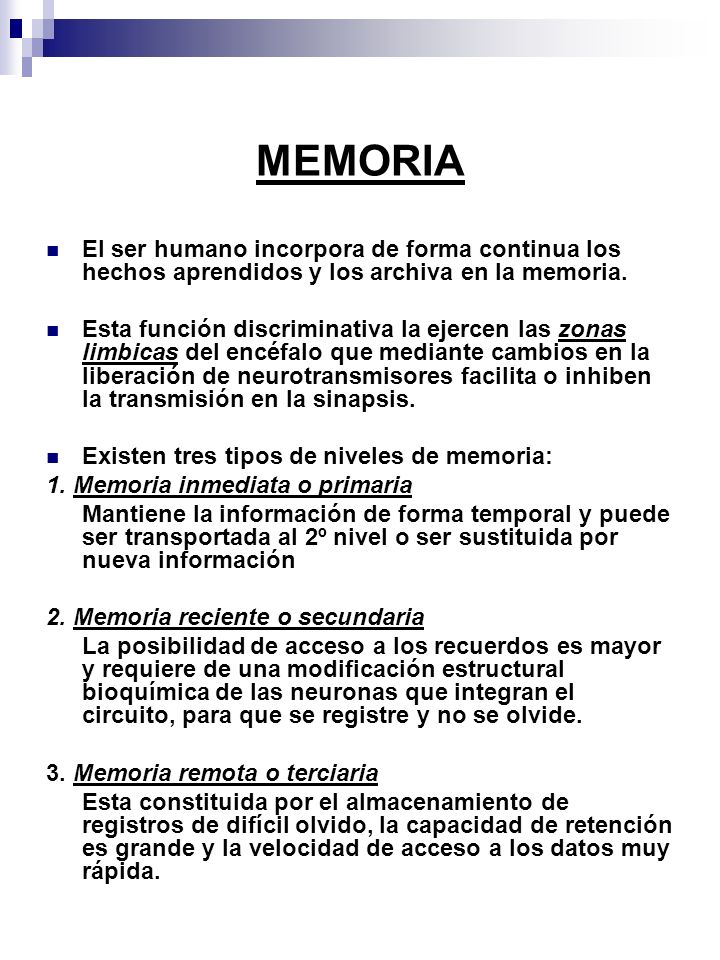 MEMORIA El ser humano incorpora de forma continua los hechos aprendidos y los archiva en la memoria. Esta función discriminativa la ejercen las zonas