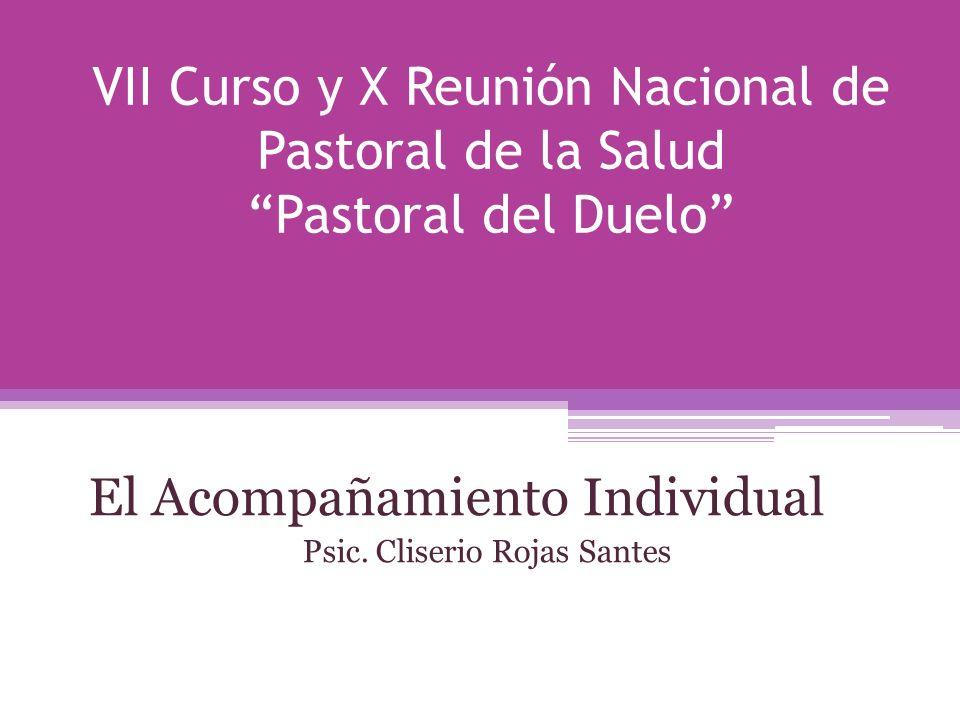 El Acompañamiento Individual Psic.Cliserio Rojas Santes Centro San Camilo Psic.