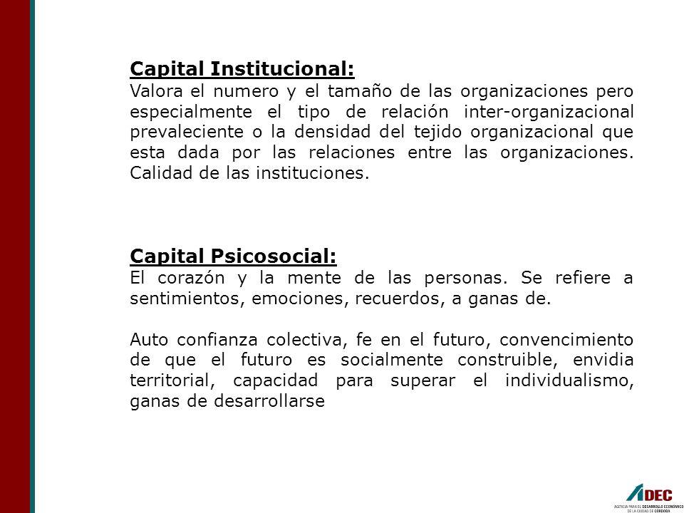 Capital Institucional: Valora el numero y el tamaño de las organizaciones pero especialmente el tipo de relación inter-organizacional prevaleciente o