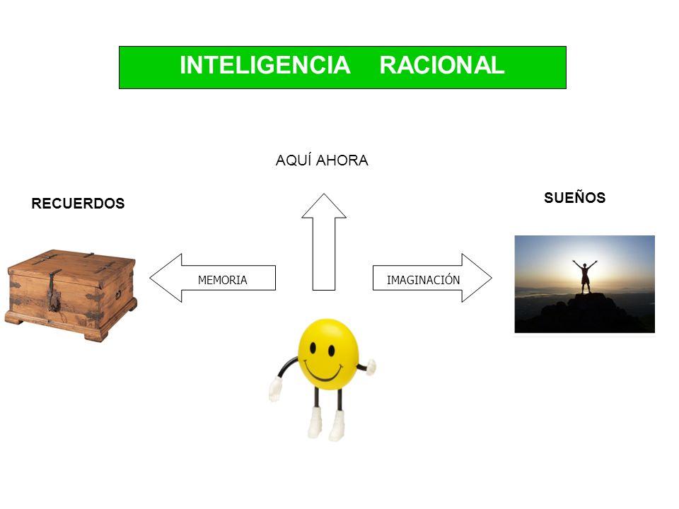 SUEÑOS RECUERDOS AQUÍ AHORA MEMORIAIMAGINACIÓN INTELIGENCIA RACIONAL